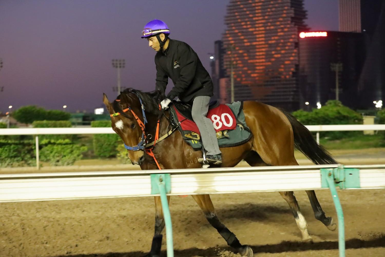 Macau Jockey Club - Company News